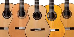 Cordoba Master Series classical guitars
